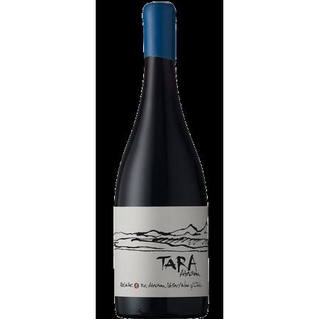 RED WINE N°1 2016 - PINOT NOIR - TARA