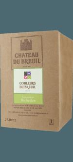 BAG IN BOX 5L - ANJOU BLANC - LES PETITES ROCHETTES 2020 - CHATEAU DU BREUIL